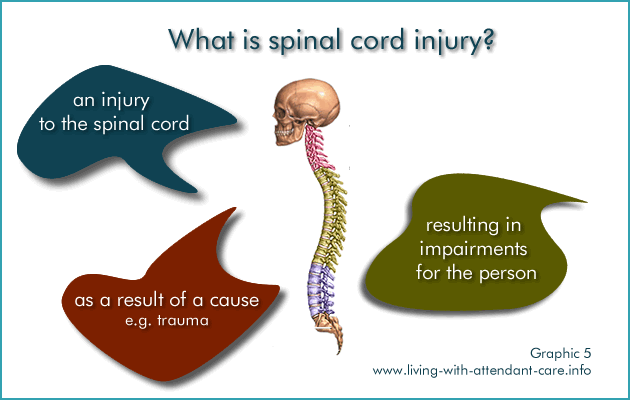 Graphic 5: